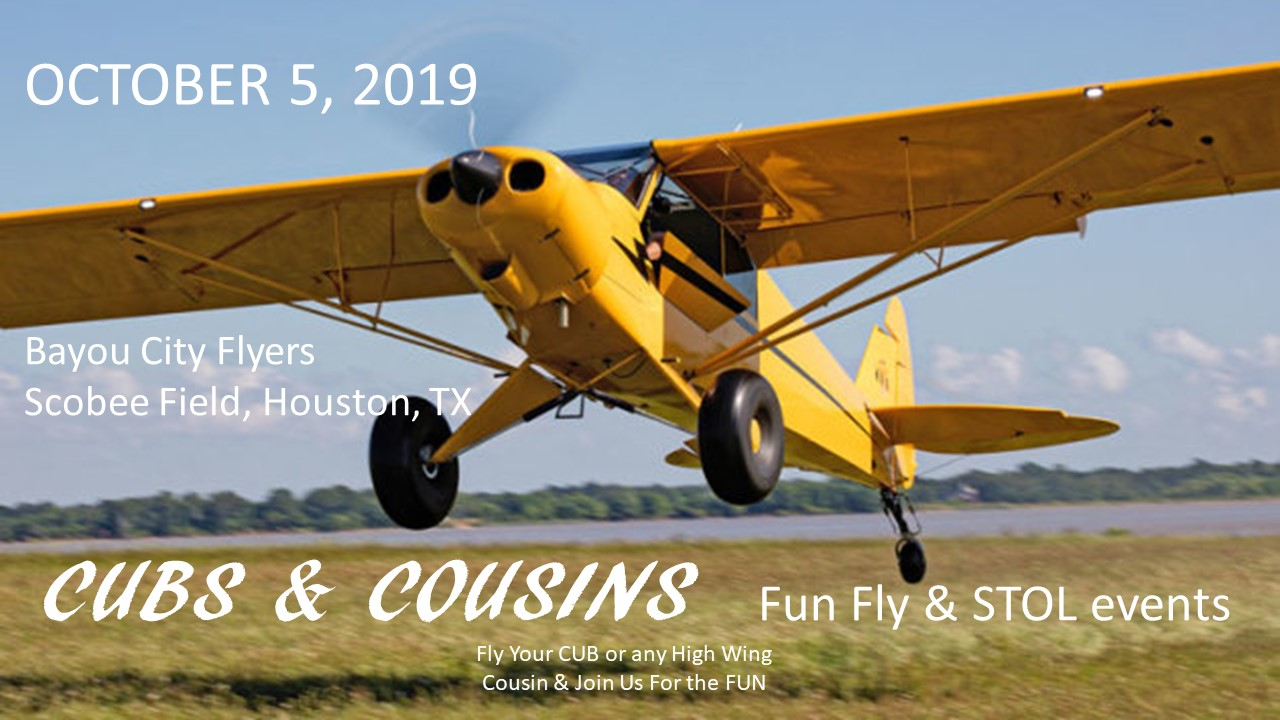 Cubs and Cousins flyer